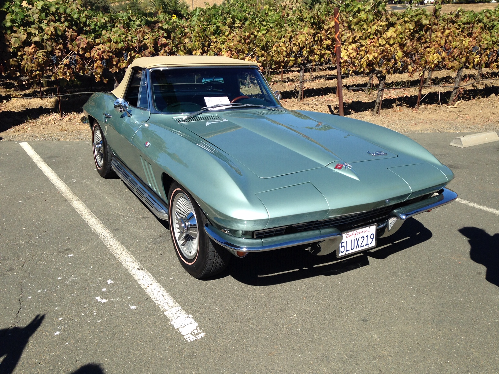 Gary & Angela's 1966 Convertible