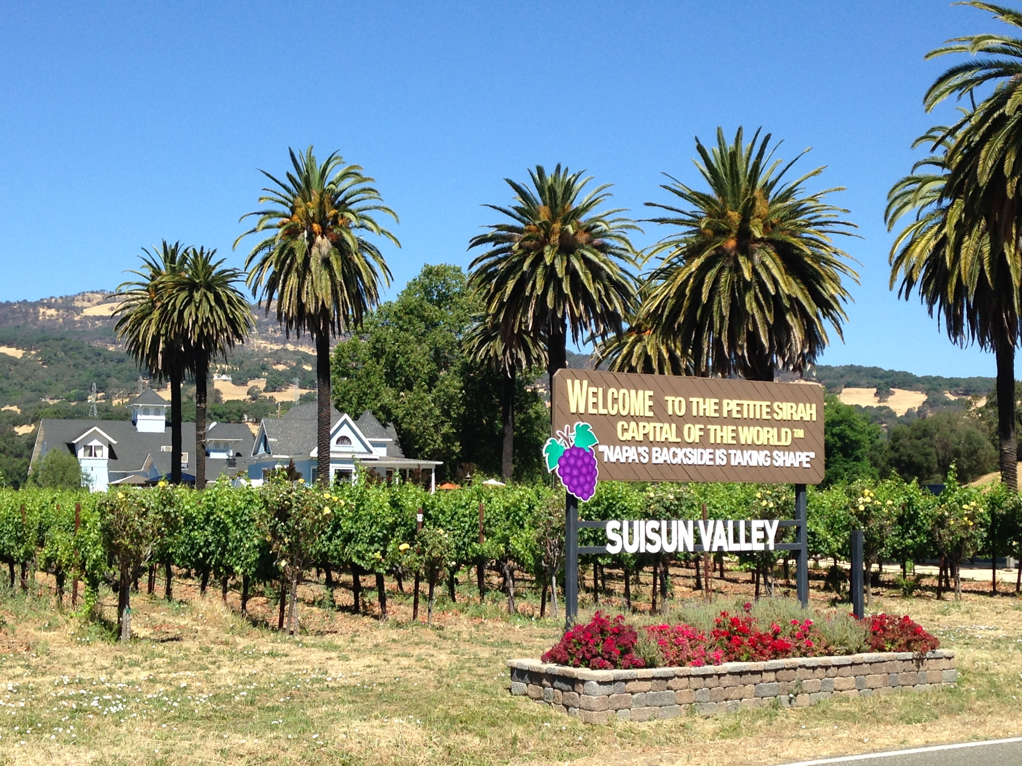 Fezer  Winery, located in the Suisun Valley, was the site of our 20th Anniversary Celebration